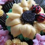cupcake bouquet-sugarcrushmiami-ladybugs