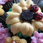 cupcake-bouquet-sugarcrushmiami-ladybugs