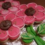 cupcakeodeas3