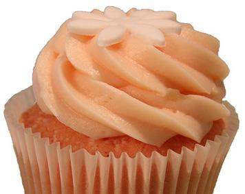 cupcakeodeas4