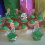 kalebs cupcakes1
